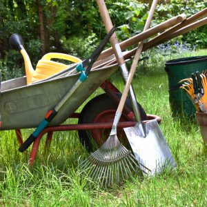 Jardineria categor as de productos gemar for Cat espace vert